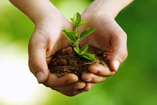 Sesiona en Cuba VII Encuentro Internacional en favor de la agroecología