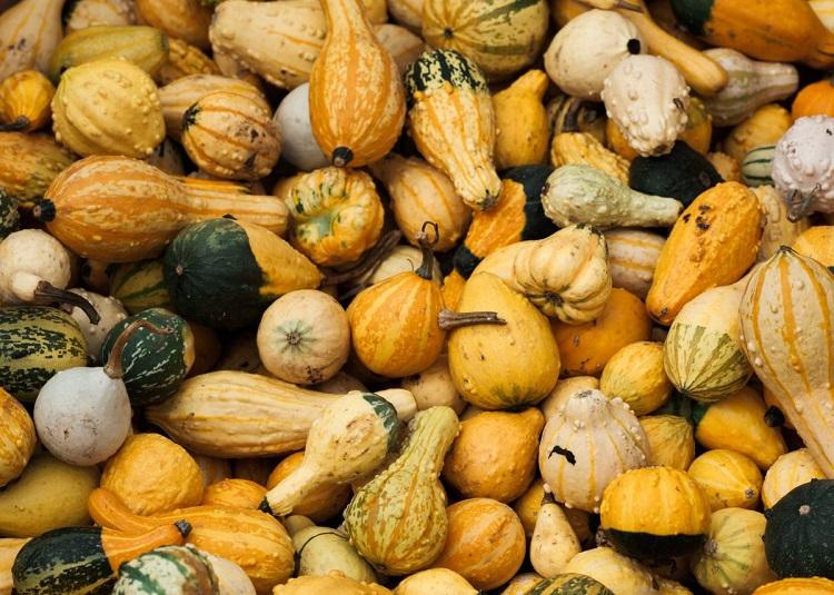 Semillas de calabaza, deliciosas al gusto y saludables