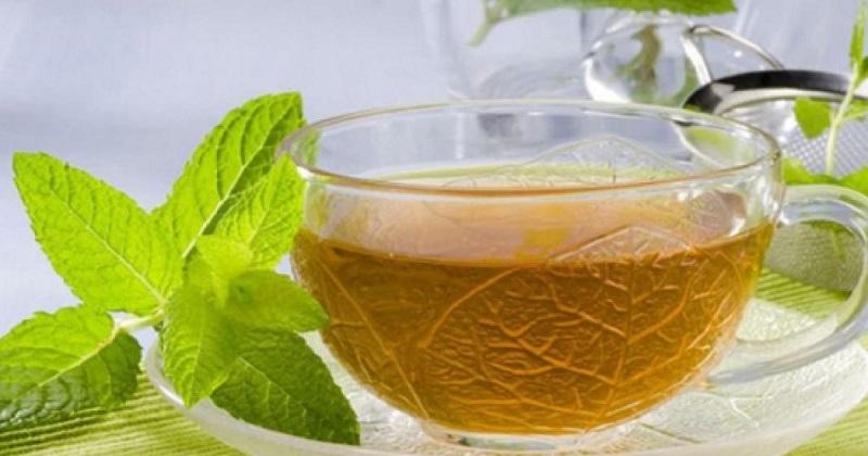 Hierbabuena: analgésica, digestiva y antiinflamatoria