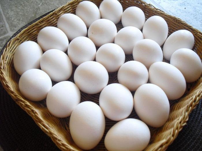 El huevo y sus mil usos