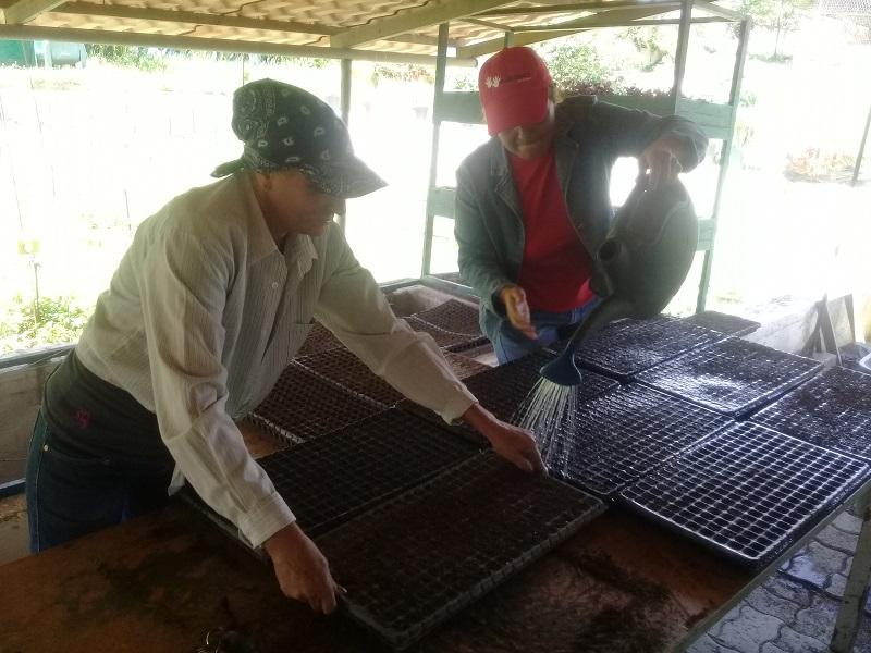 Los colaboradores de la agricultura cubana en Venezuela conmemoraron su día