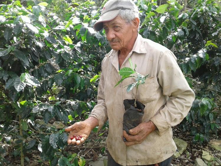http://radiorebelde.cu/images/images/2019/cuba/campesino-guantanamo.jpg