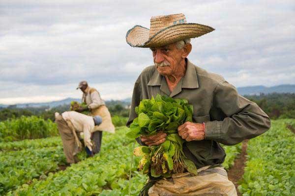 Potenciar producciones y hacerlas sostenibles
