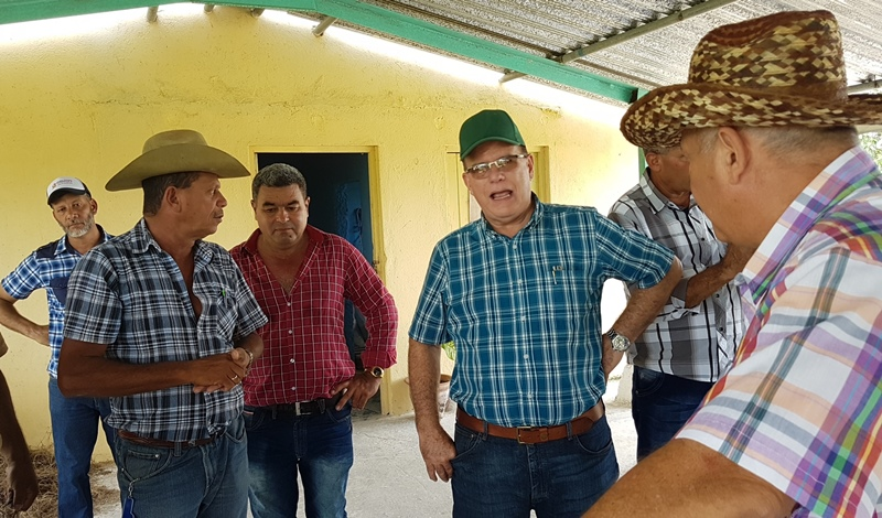 Demanda Cuba mayor eficiencia en campaña de leche vacuna
