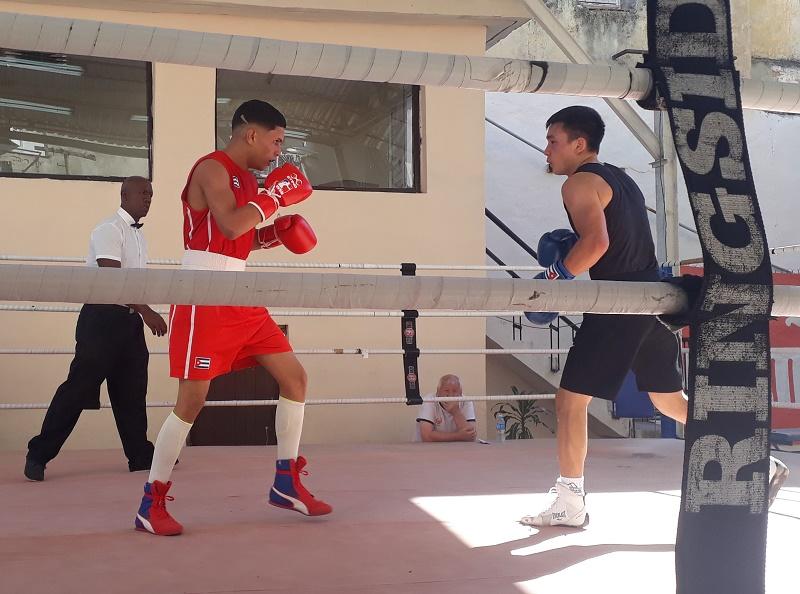 Acoge la Habana Vieja boxeo de alto nivel