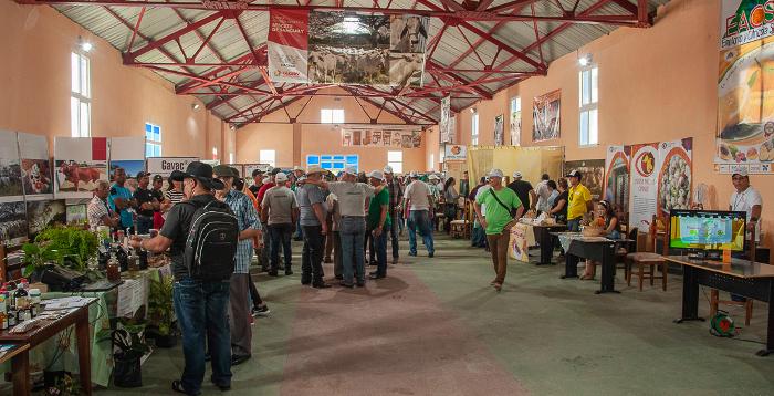 Concluyó en Camagüey Encuentro Nacional de la Agricultura Suburbana