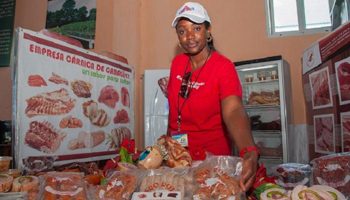Acoge Camagüey Encuentro Nacional de la Agricultura Suburbana