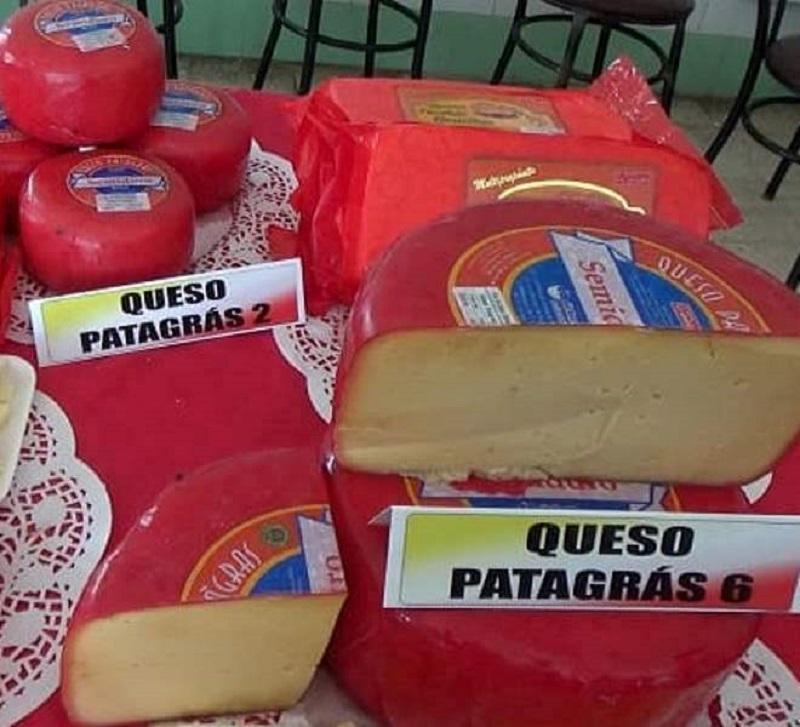 En el mes de agosto la Empresa Láctea sobrecumplió la producción de quesos con destino al mercado interno de divisas