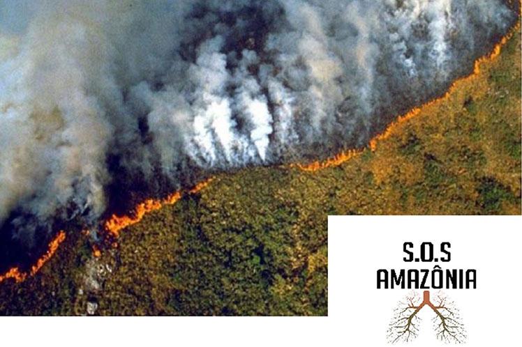 Realizarán actos en Brasil y el mundo contra la política ambiental de Jair Bolsonaro