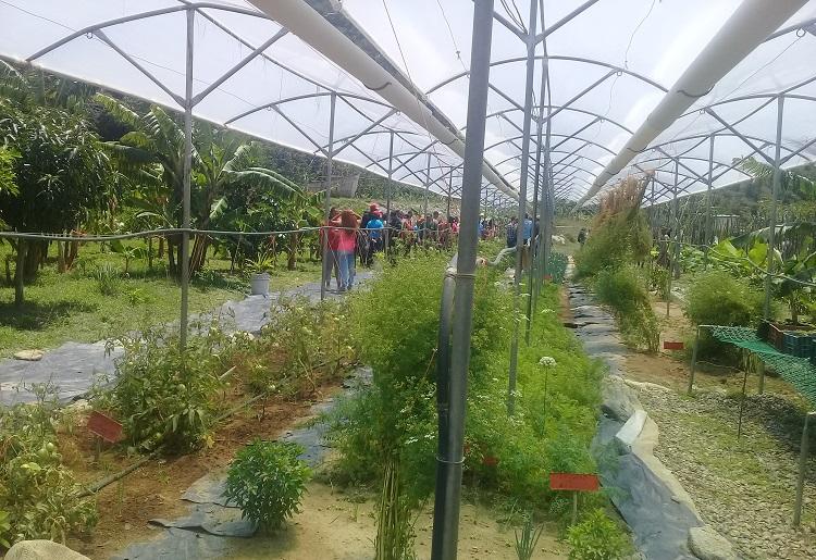 Capacitan a jóvenes venezolanos para el trabajo agrícola