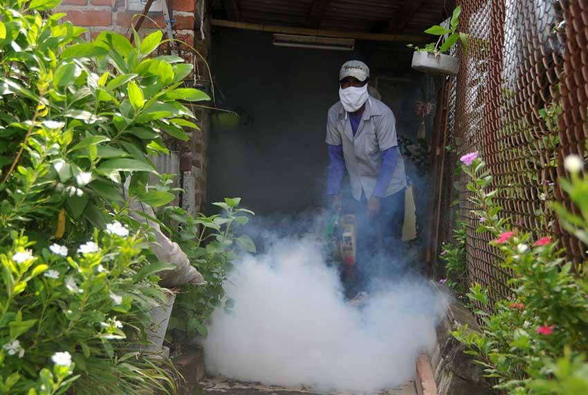 🎧 Campaña adulticida contiene al mosquito, pero requiere continuidad