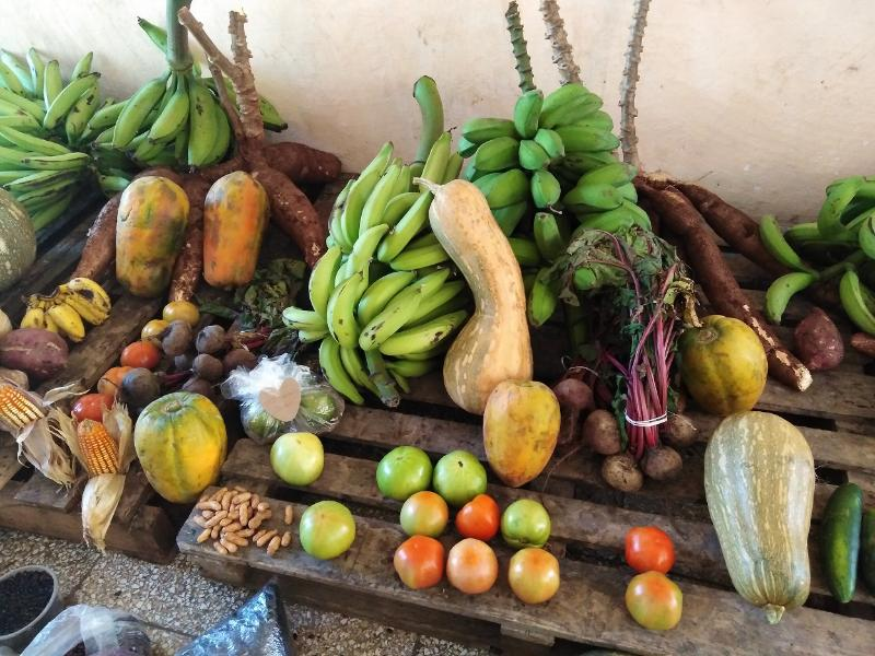 En Las Tunas, productos del agro más cerca de las familias