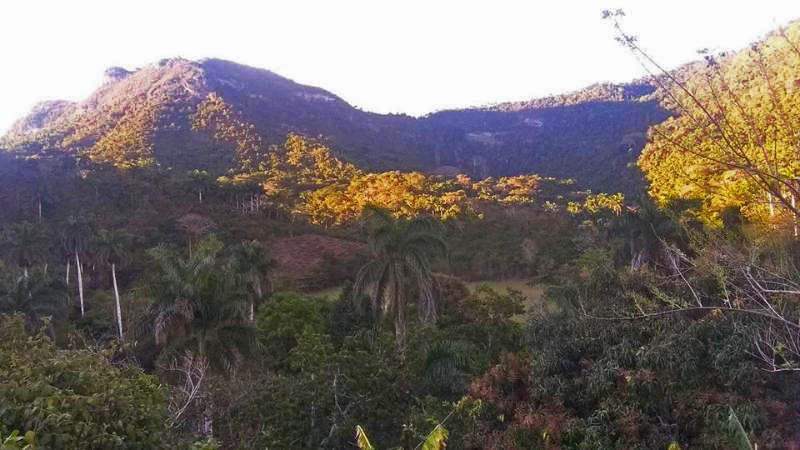 """Julio Valladares: """"De la montaña no me voy"""""""