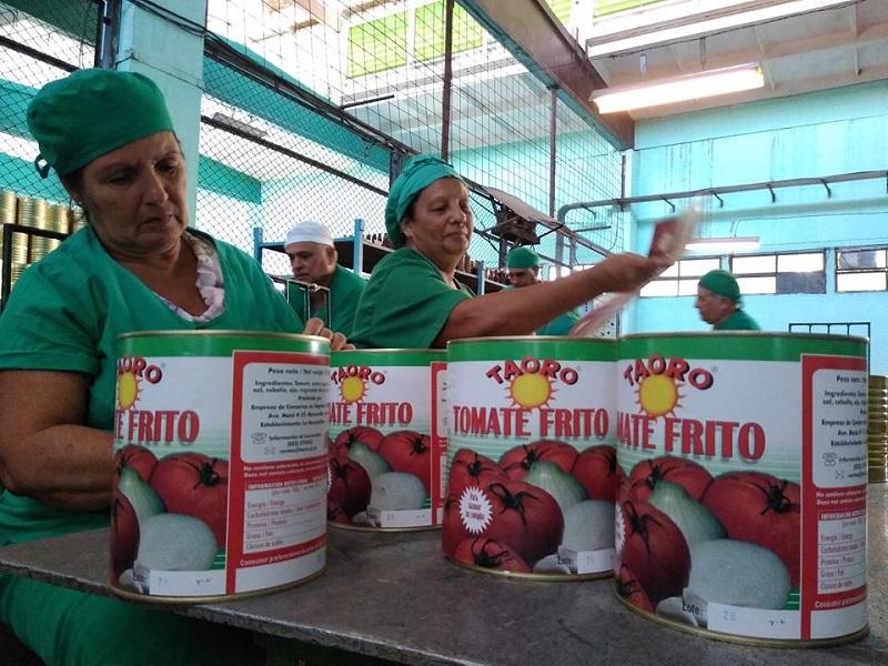 Conservas Granma recupera atraso en producciones derivadas del tomate