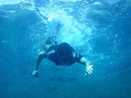 Investigación propone estrategia para proteger las costas