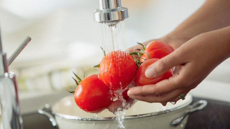 Tomates: cero fr�o y cuidado con el agua