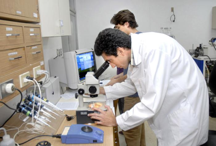 Cuban scientific community